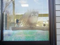 医院の外観にかわいい「ふくろうの絵」